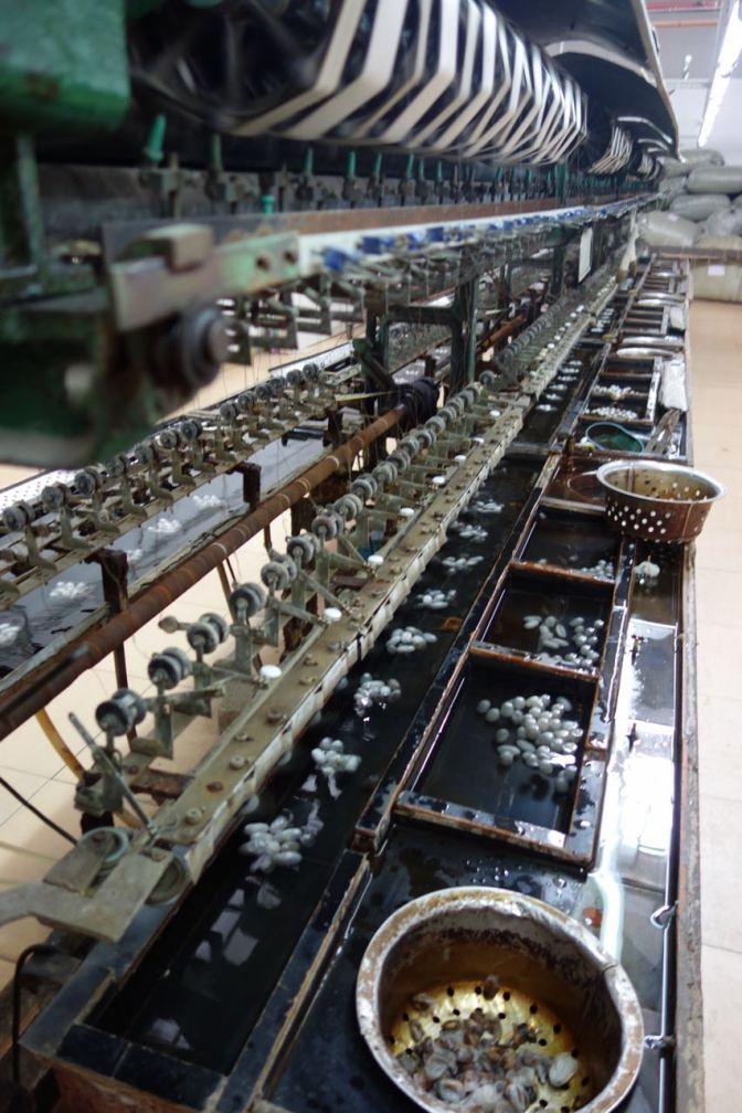 DSC07326 (853x1280)